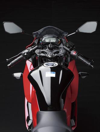 Kawasaki Ninja 250 RR Mono fuel tank top press shot