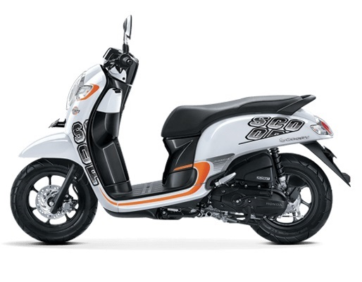 Honda Scoopy studio shot left side