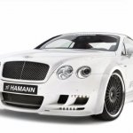 hamann_bentley_imperator_6