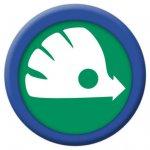 2011 Future Skoda Logo
