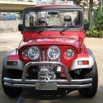 Mahindra Thar 11