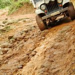 Mahindra Great Escape Sakleshpur