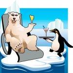 Polar bear vacation