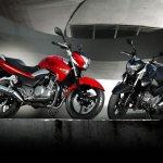 Suzuki Inazuma GW250 Red and black