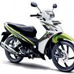 Suzuki Shooter Fi green and white