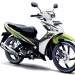 Suzuki Shooter Fi green and white
