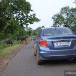 Honda Amaze diesel blue rear