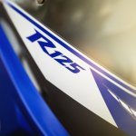 2014 Yamaha YZF-R125 badge press shot