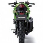 2014 Kawasaki Z250 SL press shots rear