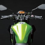2014 Kawasaki Z250 SL press shots tank