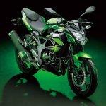 2014 Kawasaki Z250 SL press shots