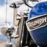 Triumph Thunderbird LT emblem official image