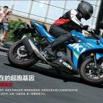 Suzuki GSX-250R official image