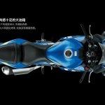 Suzuki GSX-250R top view