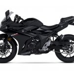 Suzuki GSX250R black side