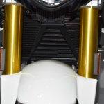 BMW G310R at BIMS 2017 radiator