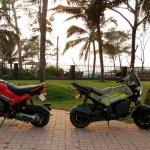 Honda Navi goa Hunt Adventure and Standard