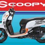 Honda Scoopy flier