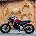 Honda Unicorn 150 Scrambler by Furious Customs side