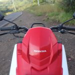 Honda Cliq Review flyscreen