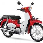 Honda Super Cub Red White press shot