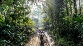 Mahindra Mojo forest top review