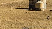 Honda Drive To Discover 6 Honda City desert