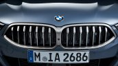 2018 BMW 8 Series Coupe BMW Kidney Grille