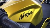 Kawasaki Ninja 250 Custom Paint Job Fuel Tank