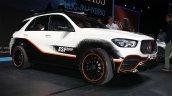 Mercedes Benz Esf 2019 2