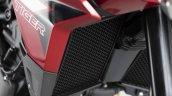 2020 Triumph Tiger 900 Gt Pro Details Radiator