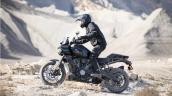 Harley Davidson Pan America 1250 Action