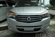Spied - The Titanic 2014 Ssangyong Stavic (Rodius) to be launched in Malaysia soon