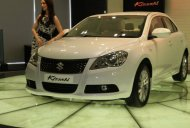 "Report - ""Very unlucky"" Suzuki Kizashi unlikely to get a successor"