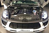 Porsche Macan Plug-in Hybrid under development, launch within 2 years - IAB Report