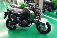 Kawasaki Z125 emerges online, could debut on October 25 - Spied
