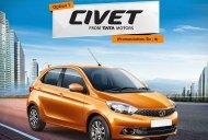 Tata Zica to be renamed 'Civet', 'Adore' or 'Tiago' - IAB Report