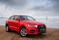 Limited-edition Audi Q3 Dynamic Edition launched in India