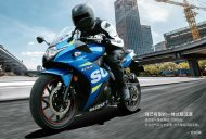 Suzuki GSX-250R unveiled in China, on sale next month