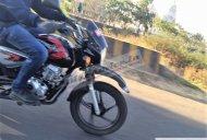 Bajaj Boxer X150 Cross spotted testing in India