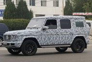 2018 Mercedes G-Class spied testing in China