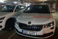 Skoda Karoq spotted next to Skoda Kodiaq Scout in India