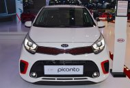 2017 Kia Picanto showcased at the 2017 Dubai Motor Show