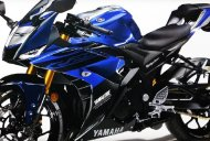 2019 Yamaha R25 could debut at the GIIAS 2018 - Report