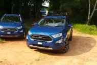 New Ford EcoSport Signature's exterior & Ford EcoSport S' MID shown in first videos
