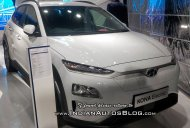 Hyundai Kona EV showcased at 2018 MOVE Summit in New Delhi