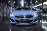2019 BMW 8 Series Coupe - Motorshow Focus