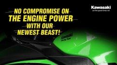 BS6 Kawasaki Ninja 300 Specs Revealed, No Loss in Power