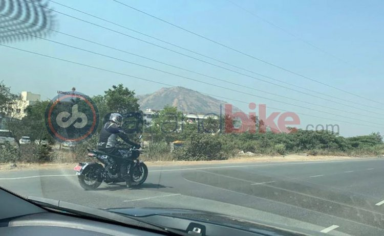 Husqvarna Svartpilen 401 Test Mule Spied In India