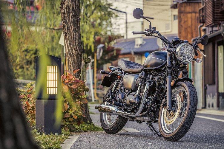 Kawasaki W800 Static